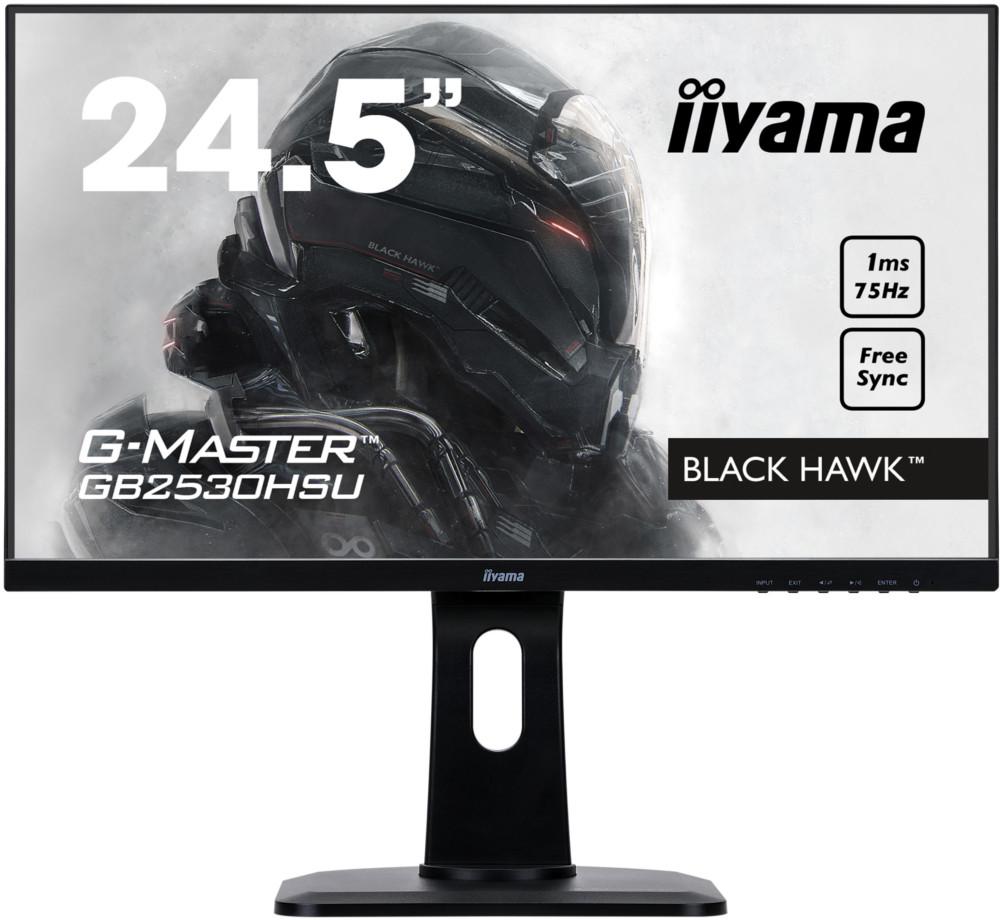 Монитор IIYAMA GB2530HSU-B1