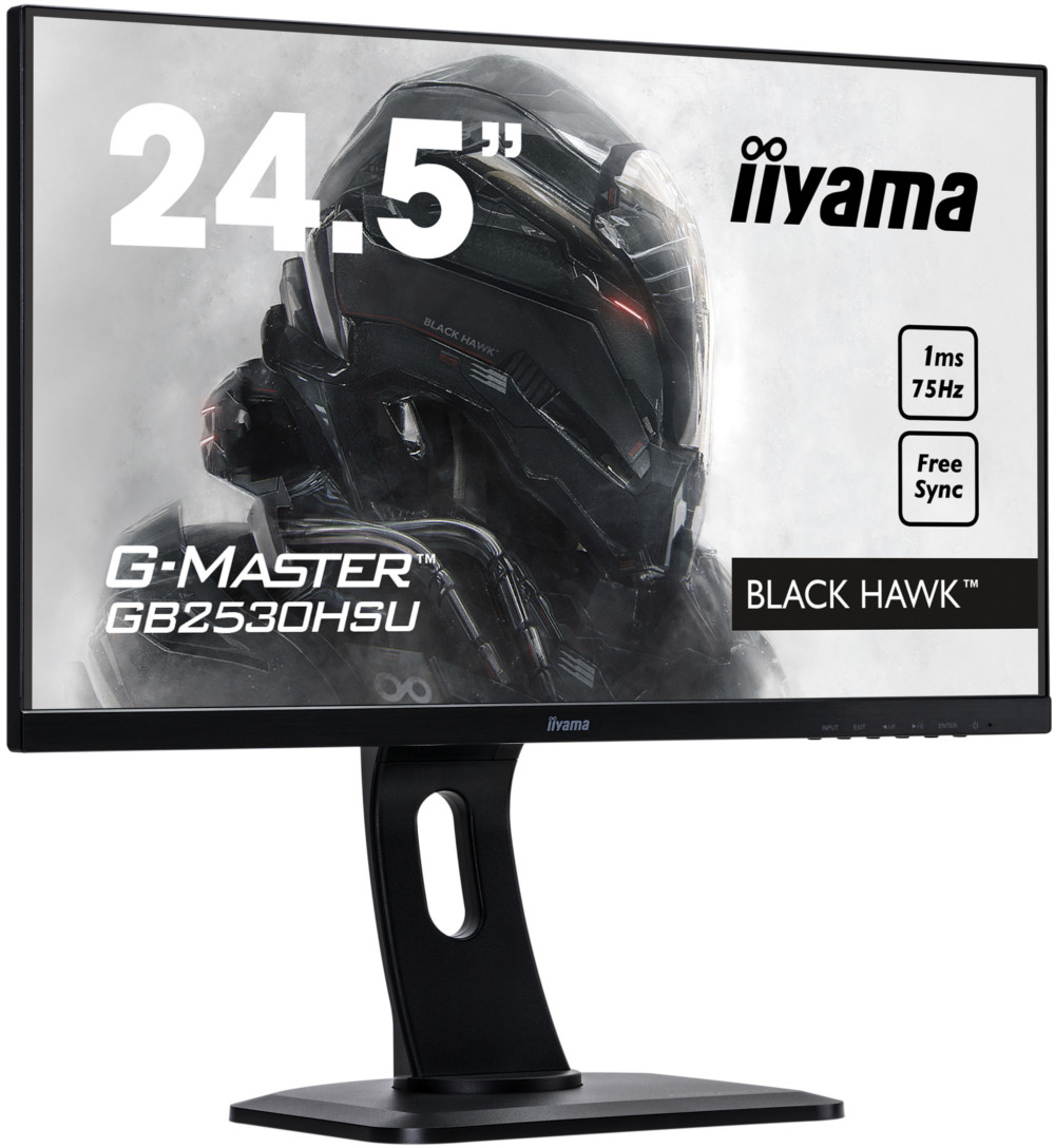 Монитор IIYAMA GB2530HSU-B1-2